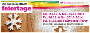 Weihnachten - Wir haben geöffnet @ HOSI Linz | Linz | Oberösterreich | Österreich