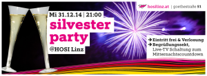 Silvester single party linz