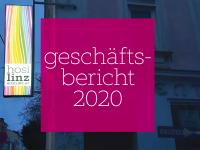 Geschäftsbericht der HOSI Linz 2020